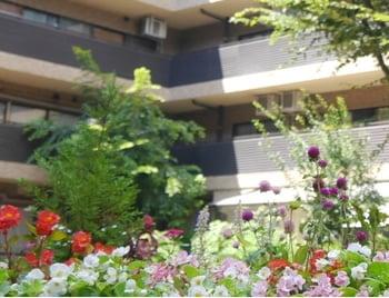 社会福祉法人 東京老人ホーム